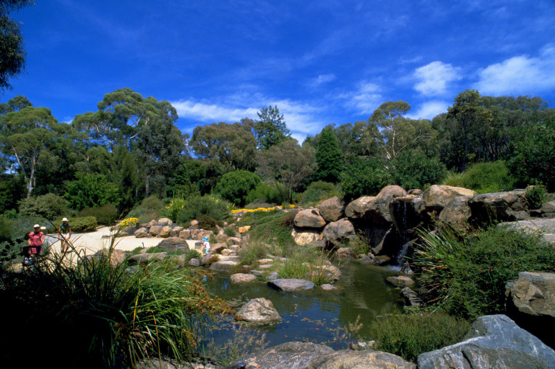 Rock garden at the Australian National Botanic Gardens